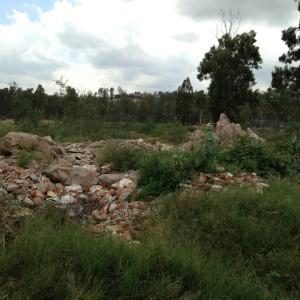 Situación. Al incluir la Conafor, son casi 10 mil metros cuadrados de superficie la que serán quitados a Recursos Naturales.